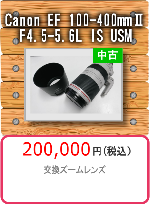 Canon EF 100‐400mmⅡF4.5-5.6L IS USM
